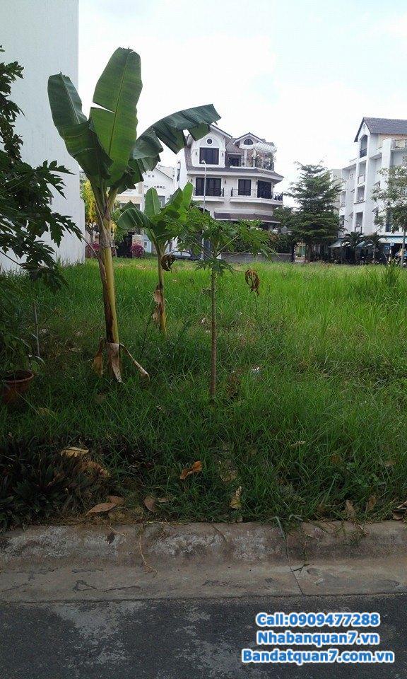 Cần bán đất KDC Him Lam Kênh Tẻ, Q7, trên trục đường D1