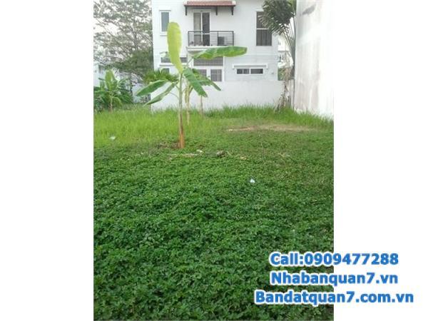 Cần bán gấp đất nền Him Lam Kênh Tẻ, nằm sau lưng MT Nguyễn Thị Thập, kế Sunrise City.