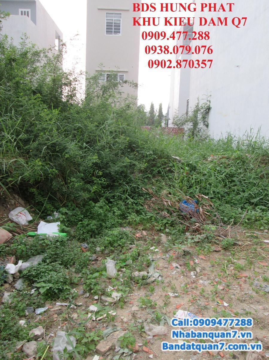 Bán đất tại đường Kiều Đàm, P. Tân Hưng, Q7.