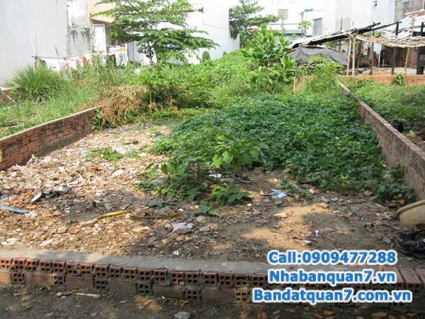 Bán đất đường số 79 phường tân quy quận 7 DTCN: 5*12m