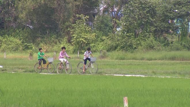 Huyện Củ Chi kêu gọi đầu tư vào 17,000 ha đất.