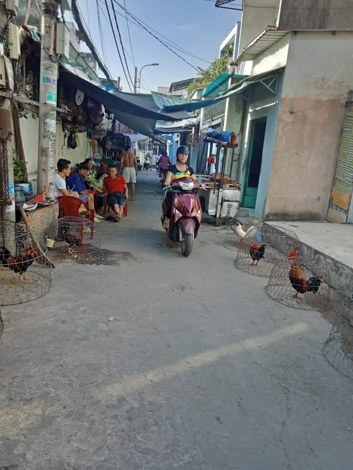 Bán dãy trọ 14 phòng hẻm 116 Huỳnh Tấn Phát, P. Tân Thuận Tây.LH:0352161628 (gặp vũ)