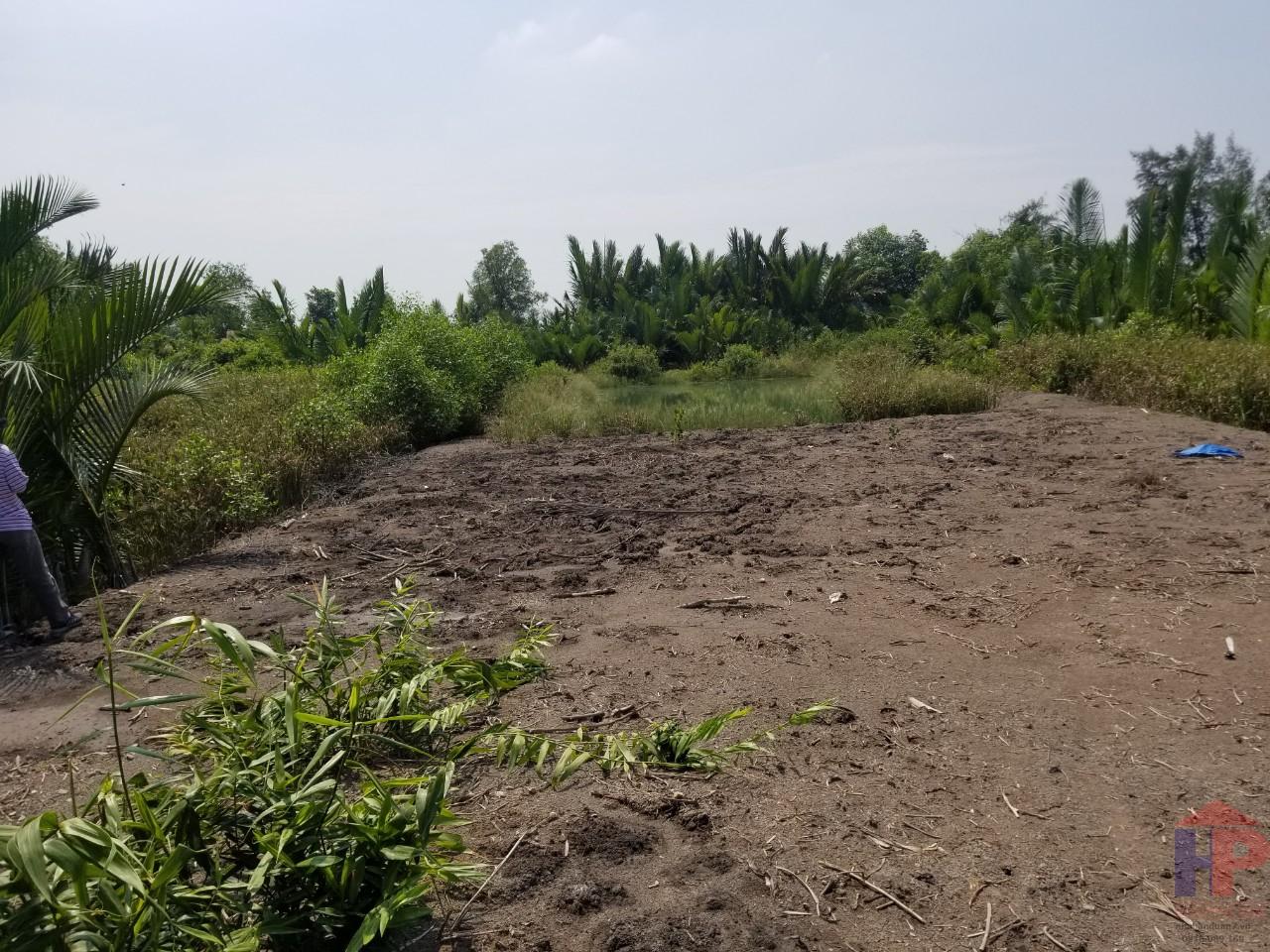 Bán đất mặt tiền đường nhánh xe hơi tam thôn hiệp cần giờ DT 573,3 m2 Giá 2.6 tỷ LH 0909477288